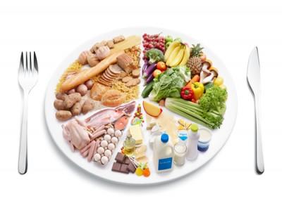 Jurnal_dieta