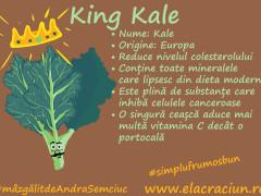 Cel mai verde și cel mai bogat rege: Regele Kale