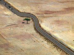 8 imagini uimitoare: ce se întâmplă când omul respectă natura?