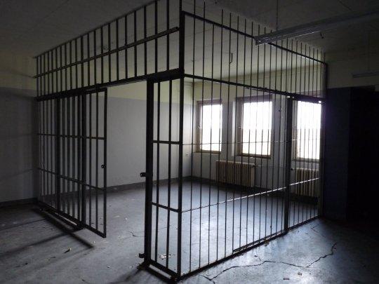 8-celula